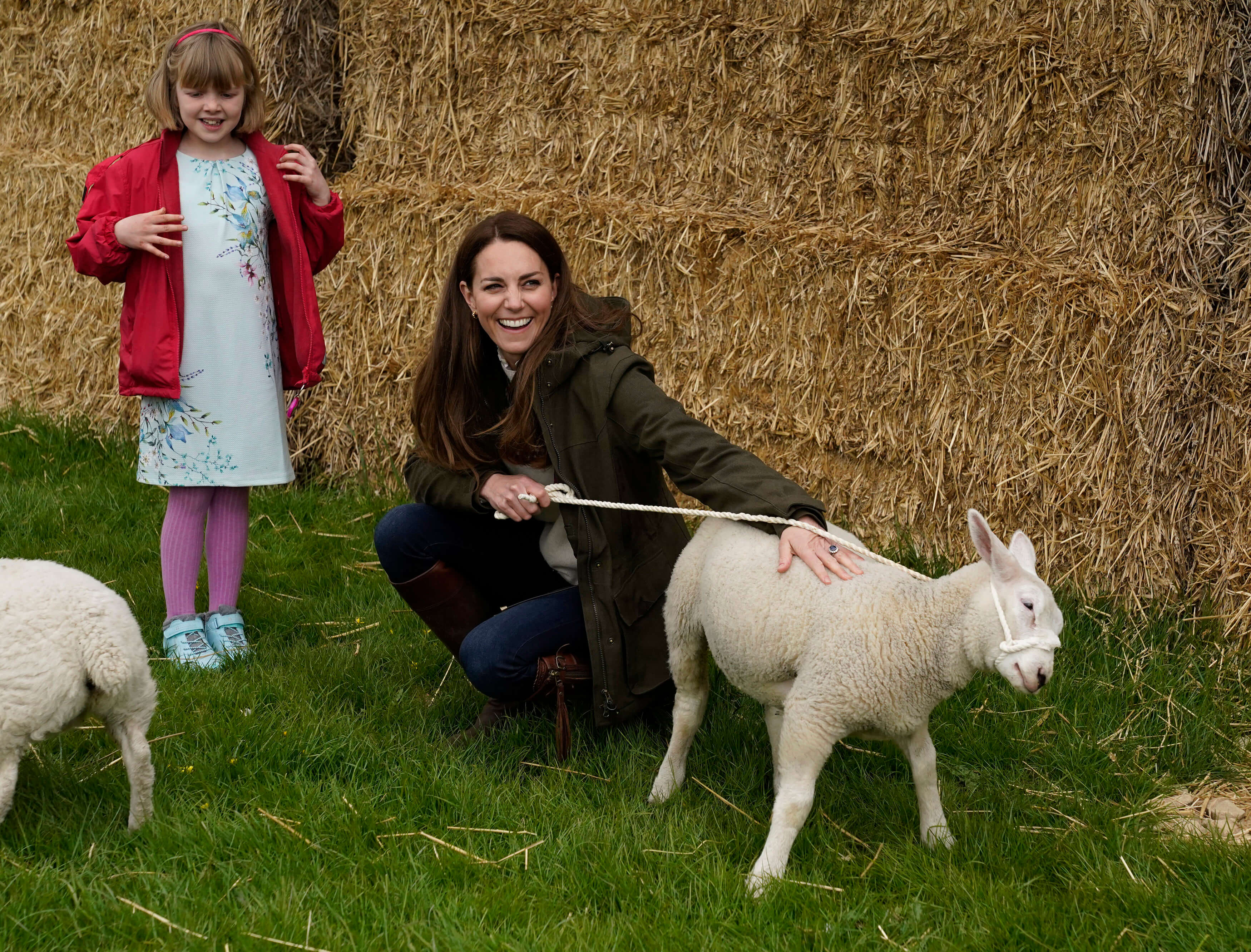 Herzogin Kate und das wilde Schaf