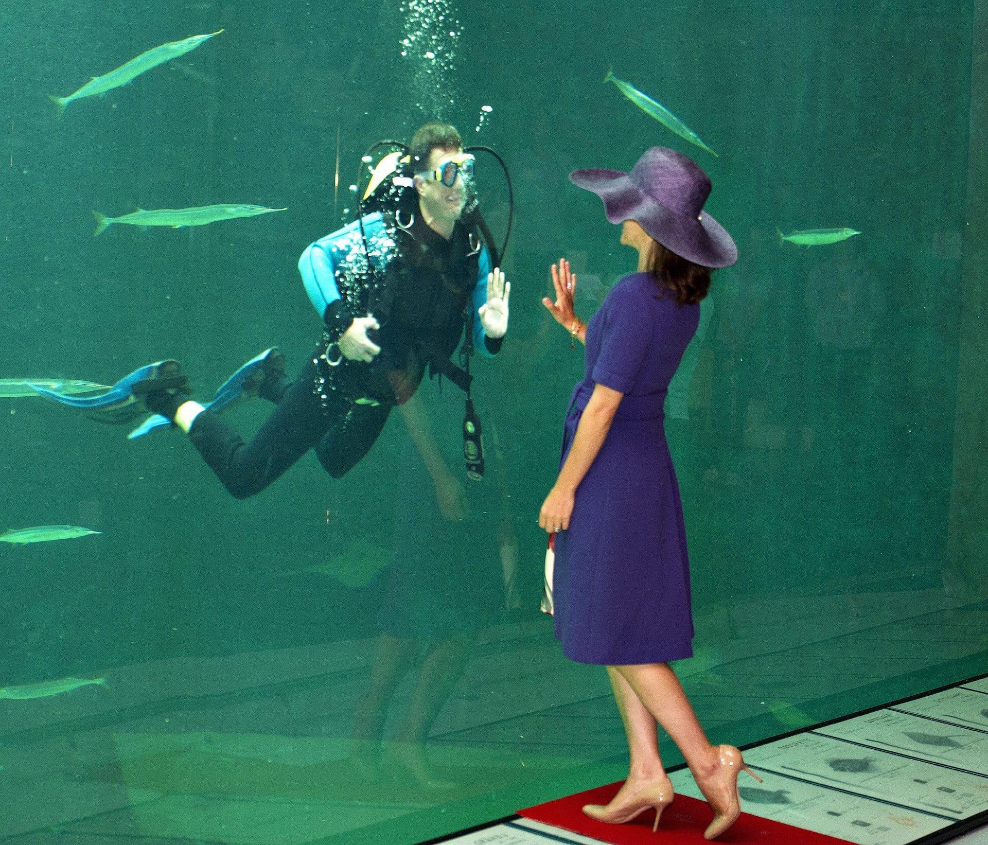 Kronprinz Frederik unter Wasser