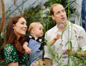 Royals im Fernsehen