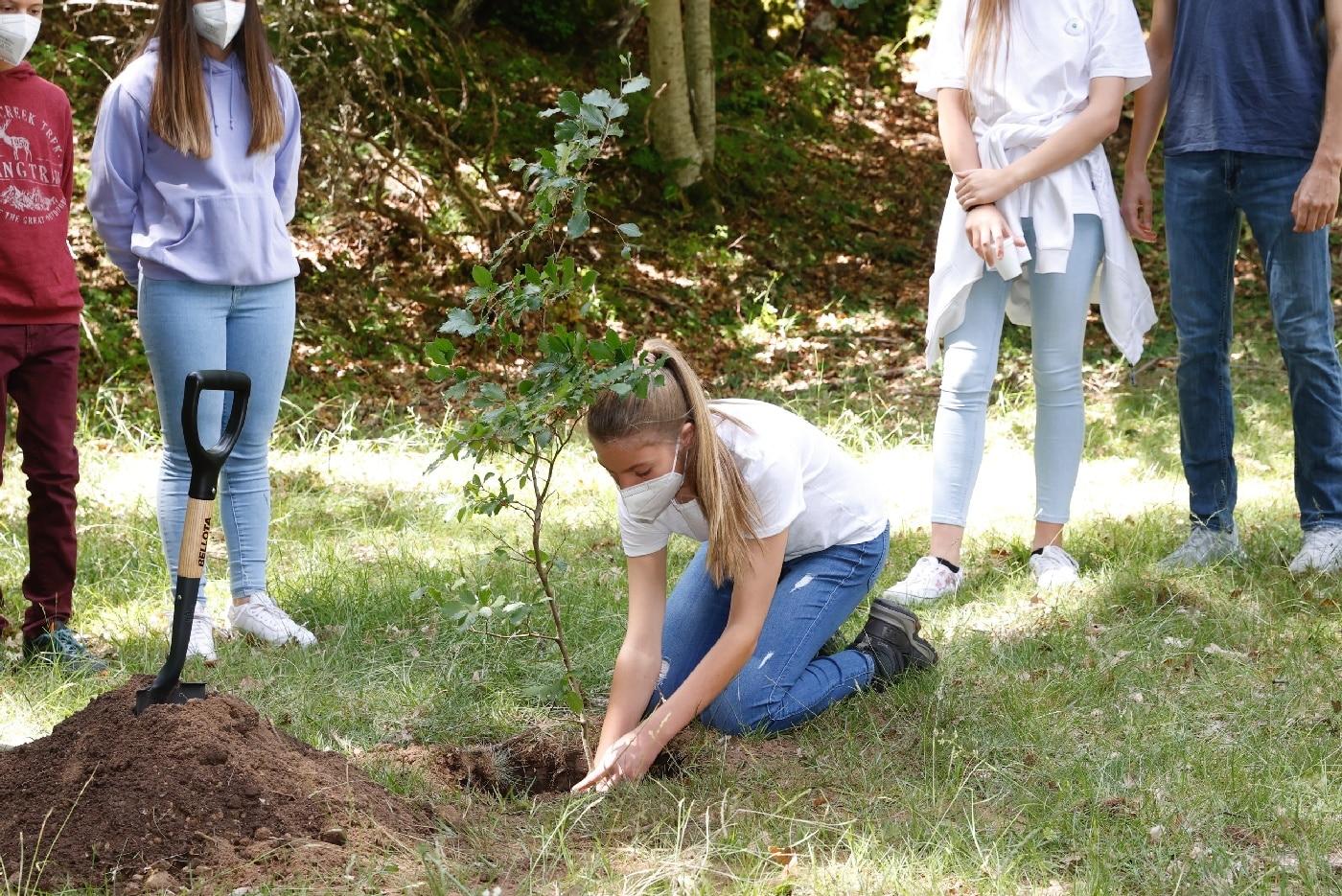 Sofia von Spanien pflanzt einen Baum