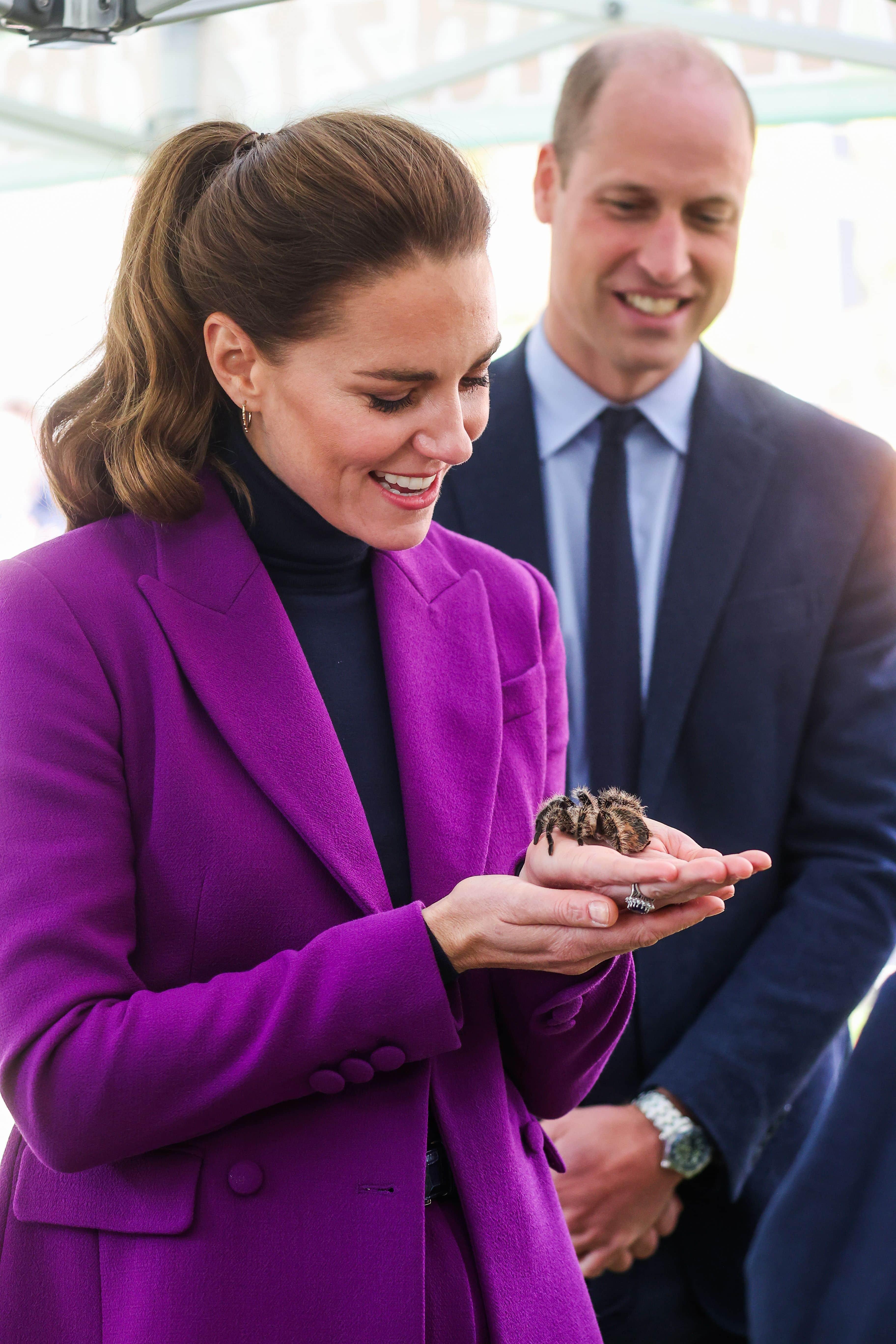 Herzogin Kate und eine Spinne