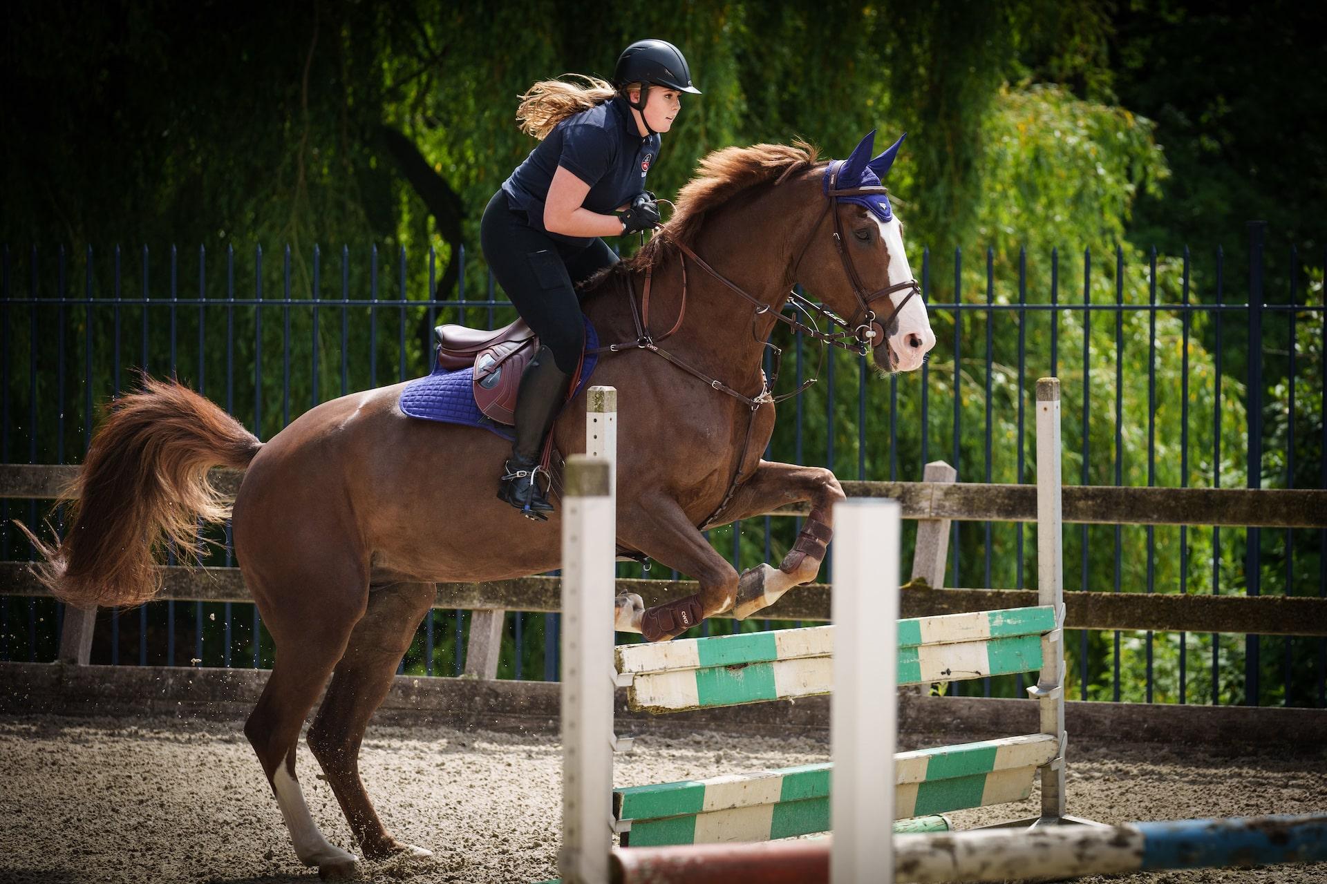 Prinzessin Amalia mit Pferd